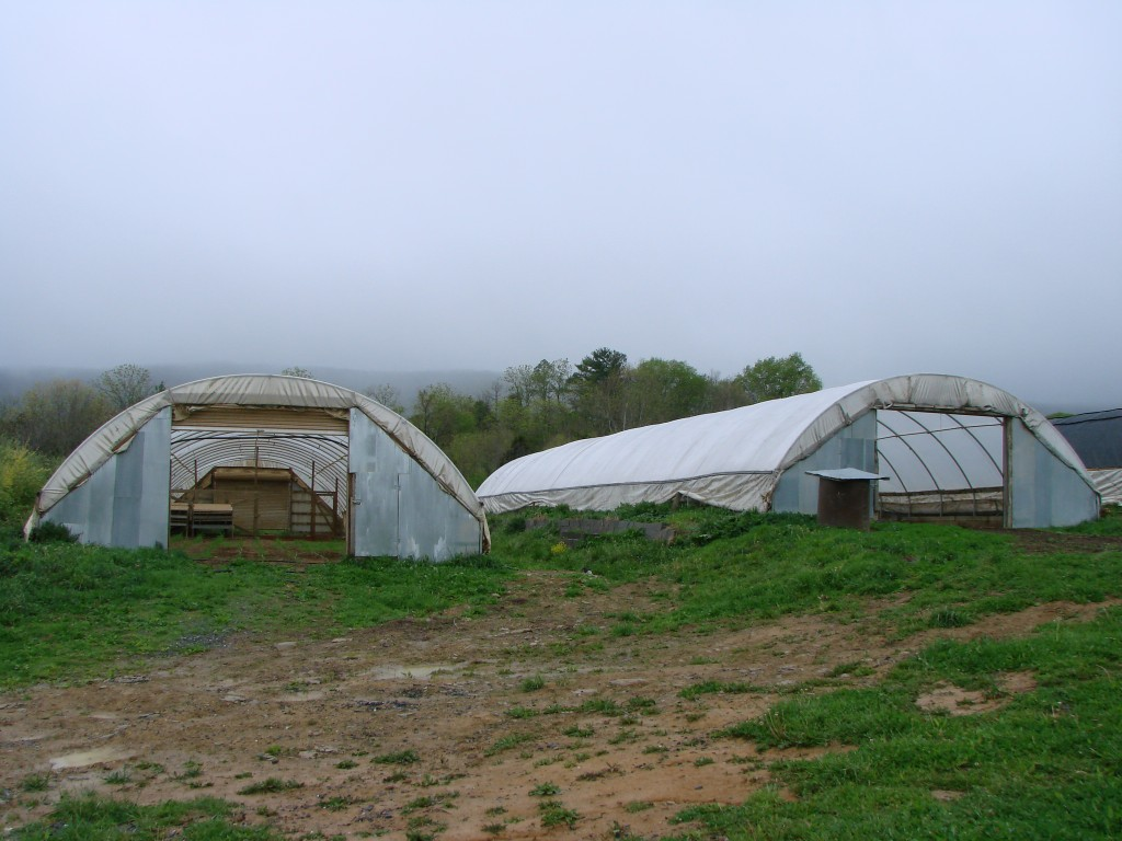polyface farms